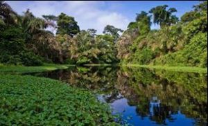 Avec Fairplay voyages, partez à la découverte du Panama, ses paysages tropicaux et sa jungle