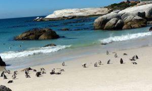 La magnifique plage de la péninsule du cap