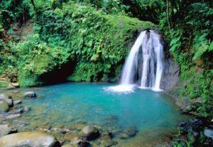 Venez découvrir les magnifiques cascades du parc national des Antilles avec Fairplay voyages